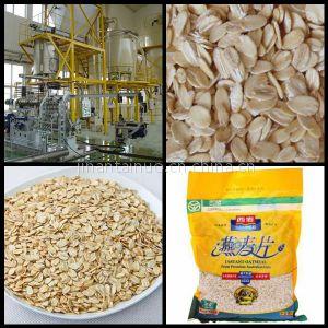 供应即食速溶营养麦片生产设备全新工艺