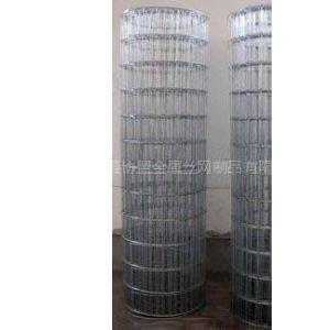 供应高品质建筑电焊网.建筑焊接网.建筑碰焊网