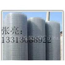 供应墙体保温热镀锌钢丝网
