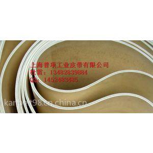 供应耐腐蚀输送带,磁性输送带,无缝输送带,一体硫化输送带