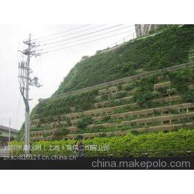 青浦区边坡支护技术 上海通际 专业的检测公司