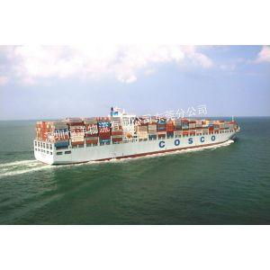 供应惠州到菲律宾/马来西亚国际海运货代
