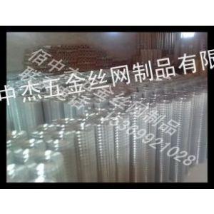 现货供应镀锌电焊网  二分之一电焊网