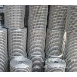 供应304不锈钢电焊网 热镀锌电焊网 养殖电焊网