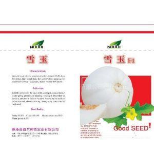 供应供应进口杂交皮色纯白优质甜瓜种子
