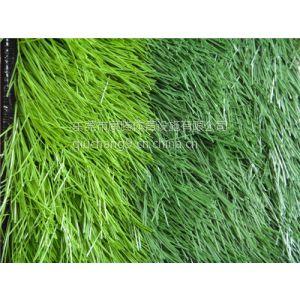 供应厂家直销经济实惠人工草皮/航拍人造草/展览地面装饰人工草皮