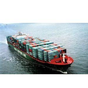 供应天津海运货代专一建材进出口代理报关