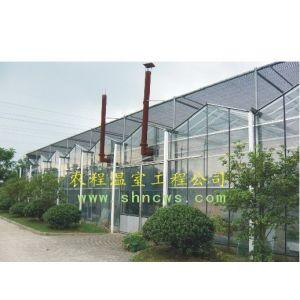 供应文洛式玻璃温室 智能温室 农程温室大棚