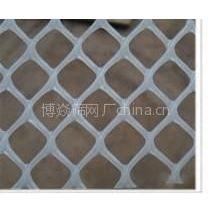 供应塑料平网 塑料筛网 空调过滤网
