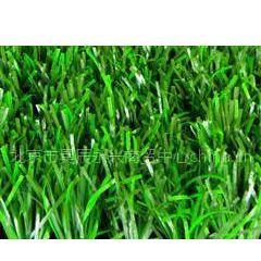 人造草坪|人造草皮|足球场/篮球场/网球场球场草坪