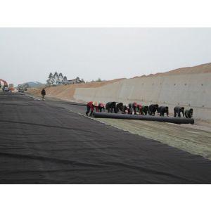 供应上海HDPE土工膜价格|垃圾填埋场专用HDPE