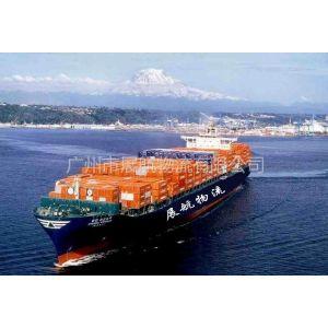 国内水运集装箱运输20GP/40HQ港口集装箱运输