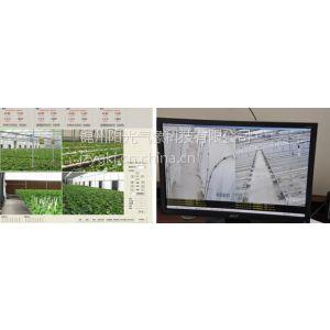 供应供应TRM-ZSJK型田间环境实景监控系统(温室)