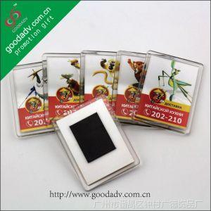 供应【广州厂家】订做 功夫熊猫套装亚克力冰箱贴 广告环保塑料磁贴