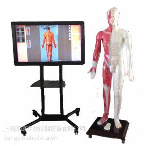 供应康谊牌多媒体人体针灸穴位交互数字平台