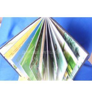供应婚纱相簿专用绿宝马灰板纸