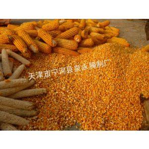 供应供应玉米