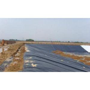 供应优质土工膜|PE土工膜