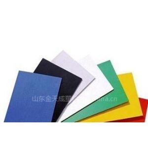 供应PVC板 PP板 塑料彩板