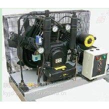 供应09WM-1130H中高压空压机,高压氧仓设备,食品饮料加工