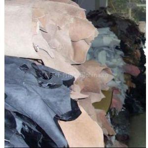供应印度真皮进口清关服务