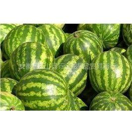 供应供应优质西瓜 油桃 甜瓜 葡萄