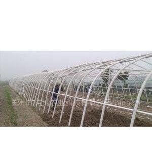 供应南方建新型第五代温室无支柱蔬菜食用菌大棚骨架机价格