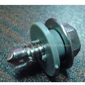 供应隐形防护网螺丝M5*14螺丝户外使用30年不生锈