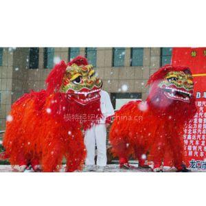 提供新年开张舞龙舞狮表演13632441355