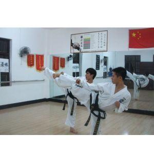 南宁成人跆拳道,动境正统跆拳道技术,广西少儿跆拳道