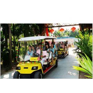 供应上海11座观光旅游车