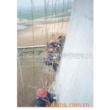 供应苏州蓝圣 专业提供冷却塔内外壁清扫、打磨服务
