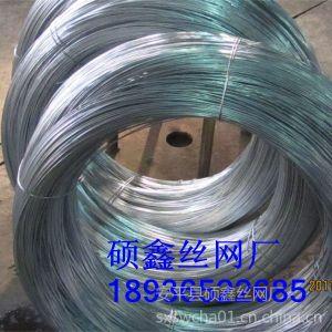 供应供应镀锌钢丝,葡萄架用热镀锌钢丝,经久耐用,不生锈