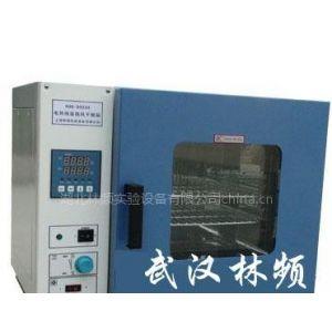 供应平价销售烘箱/真空干燥箱/真空干燥机