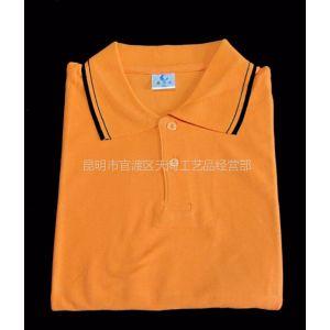 供应供应昆明纯棉广告衫昆明广告衫的报价及材质