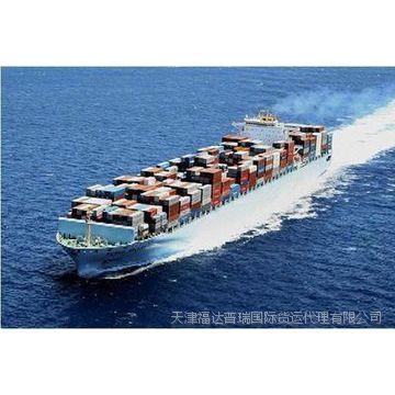 供应天津新港实力货代公司 国际物流海运到美国