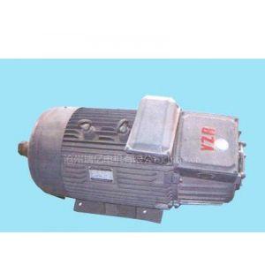 供应YZR系列、YZ系列起重及冶金用电动机