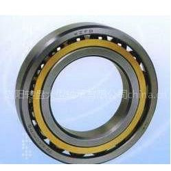 供应角接触球轴承市场报价/深沟球厂家/圆柱轴承/圆锥轴承