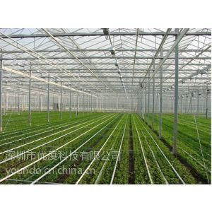 供应优度科技:曲房温湿度监控系统