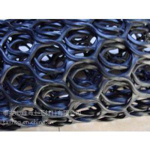 供应衡阳罩面网护坡挂件 三维绿化土工网垫质优价廉