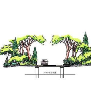供应道路 公路绿化 园路景观类园林设计方案与施工图库
