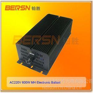 供应厂家供应高光效高压钠灯电子镇流器600W/220V二年质何