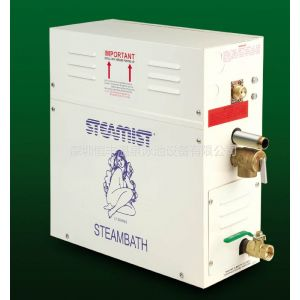 供应蒸汽发生器/蒸汽机/湿蒸机