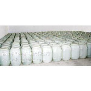 供应果葡糖浆厂家 果葡糖浆价格