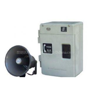 供应HAT86(XⅡ)P/T-F数字式抗噪声扩音呼叫型特种电话机