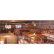 供应猪产床 保育网