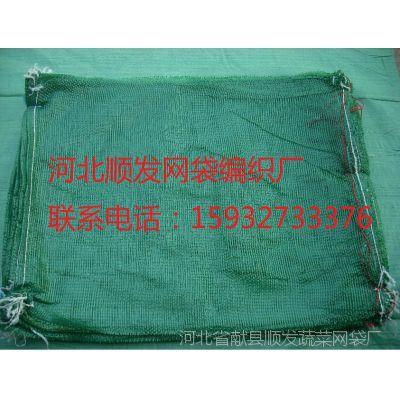 献县网袋厂家现货供应绿70*90CM海菜网眼袋 龙须菜 网袋 编织网袋