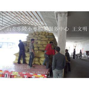 供应乐陵红枣专业批发包装