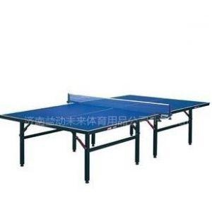 供应乒乓球用品 乒乓球桌专卖店 乒乓球桌标准尺寸 红双喜乒乓球桌厂家直销