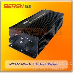 供应厂家低价供应高压钠灯电子镇流器400W/220V